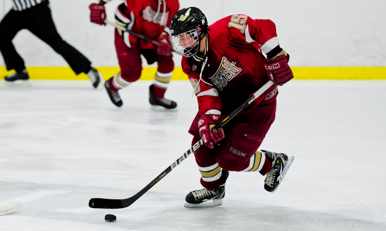 MN H.S.: State Tourney - Lakeville South Vs. Duluth East (LIVE Streaming)