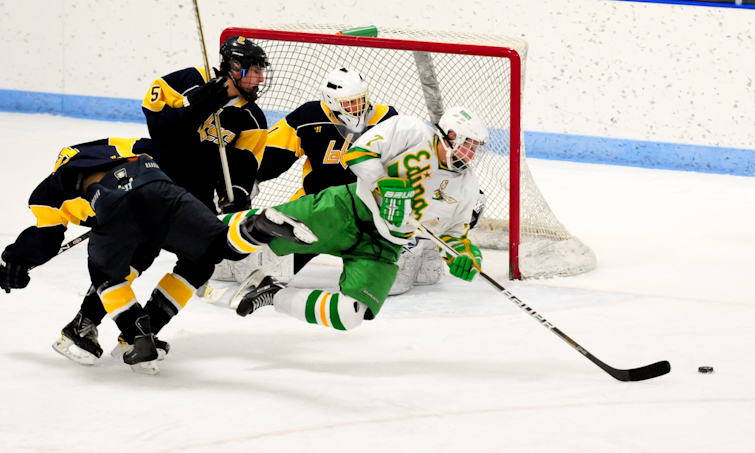 MN H.S.: Edina Flies Past Lakers Into Section Finals (Saturday)