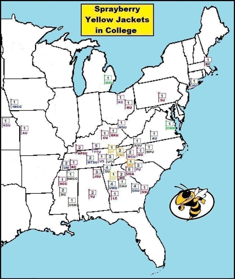 Wasps, Hornets, Yellow Jackets, Mud Daubers, Bees, Bumble Bees