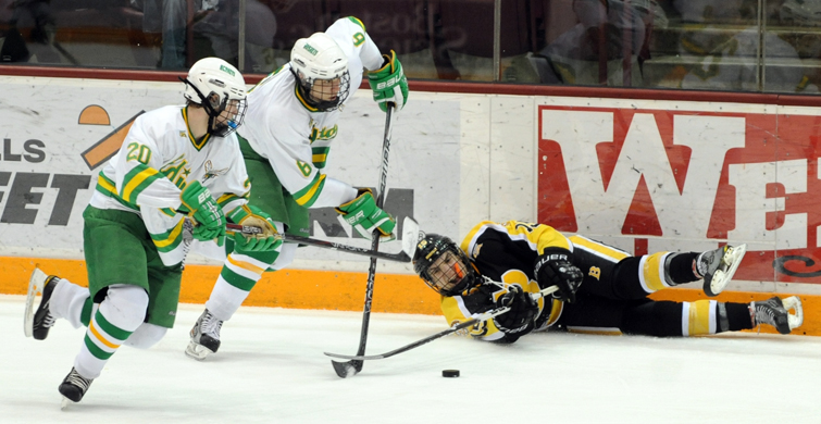 MN H.S.: Edina Knocks Out Blaze - Hornets Earn Sixth Straight State Tourney Berth With Victory Over Burnsville